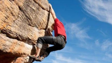 Photo of ریسک های طلایی کارآفرین ها